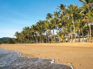 Plam Cove Beachfront Queensland