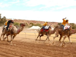 Outback Racing Alice Springs Camel Cup Australian Traveller