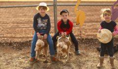 The next generation: Camel Cup, Alice Springs (photo: Jennifer Pinkerton).