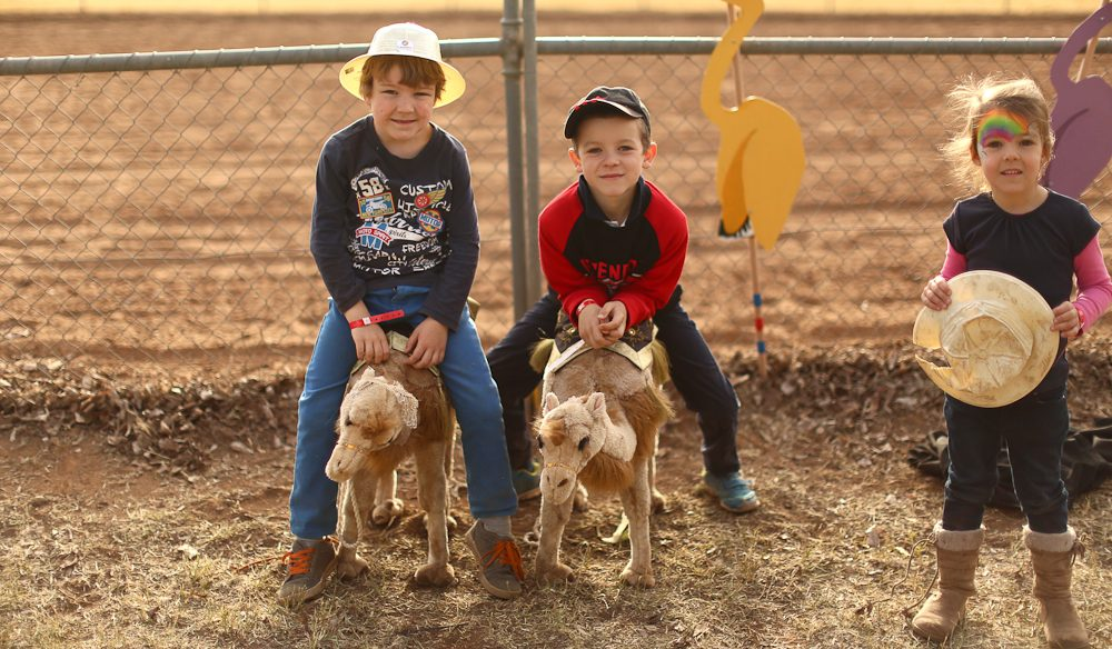 The next generation: Camel Cup, Alice Springs (photo: Jennifer Pinkerton).