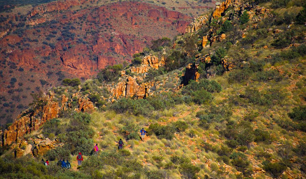 Getting amongst the Mount Sonder descent, Larapinta Trail (photo: Graham Freeman).