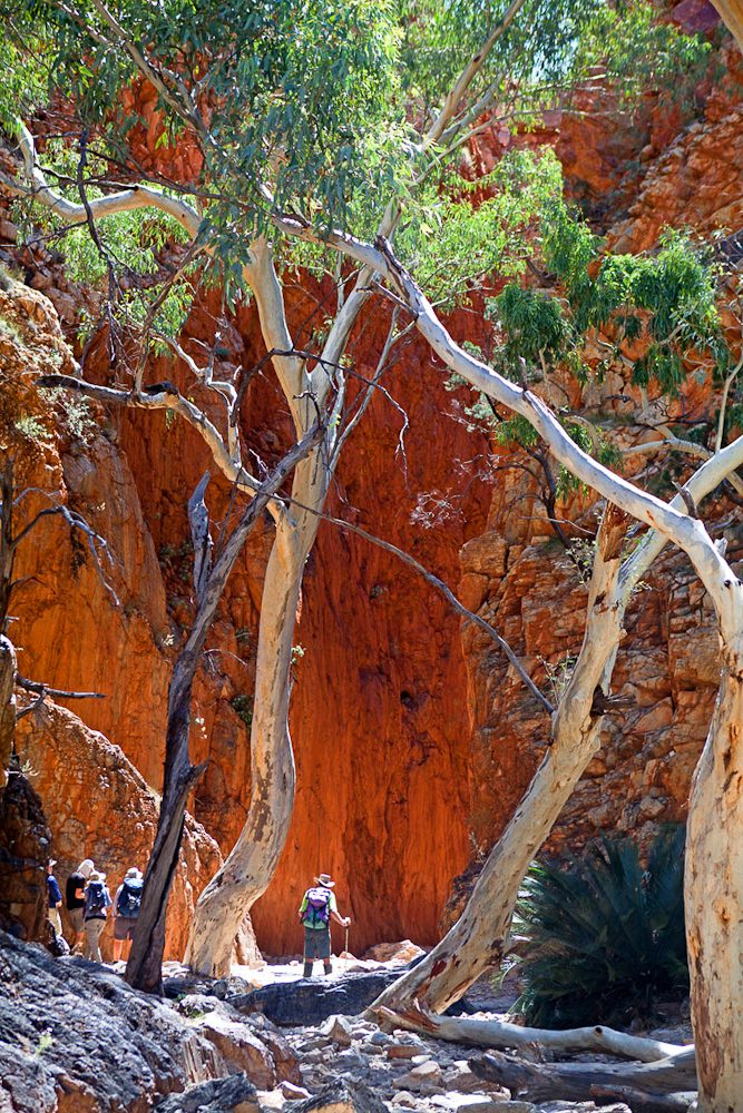 Bushwalkers at the entrance to Standley Chasm