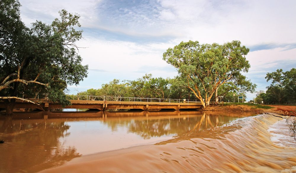 The Parloo River running strong on the outskirts of Eulo, outback Queensland (photo: Nathan Dyer).