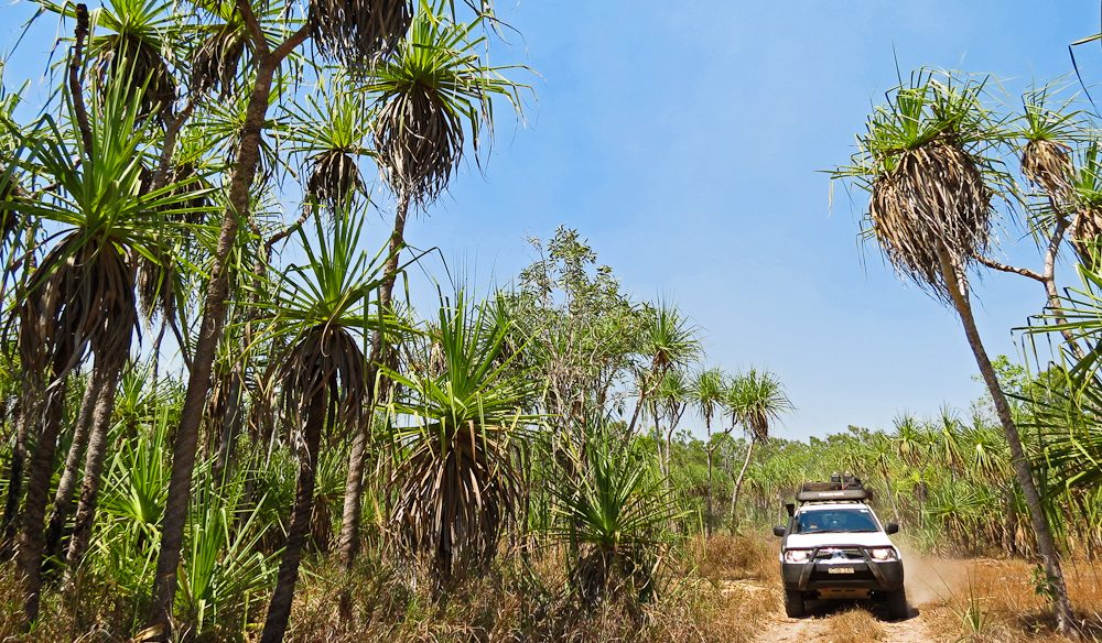 Getting amongst it on a Kakadu 4WD (photo: Lee Atkinson).