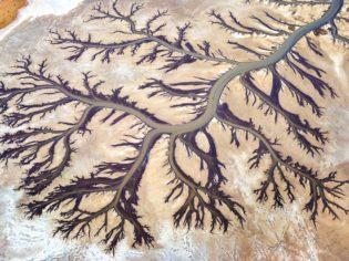 The Tree of Life Ken Duncan King Sound Kimberley