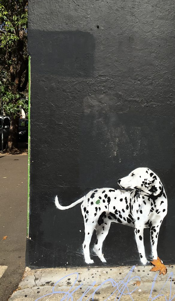 The painted dog Surry Hills, Sydney.
