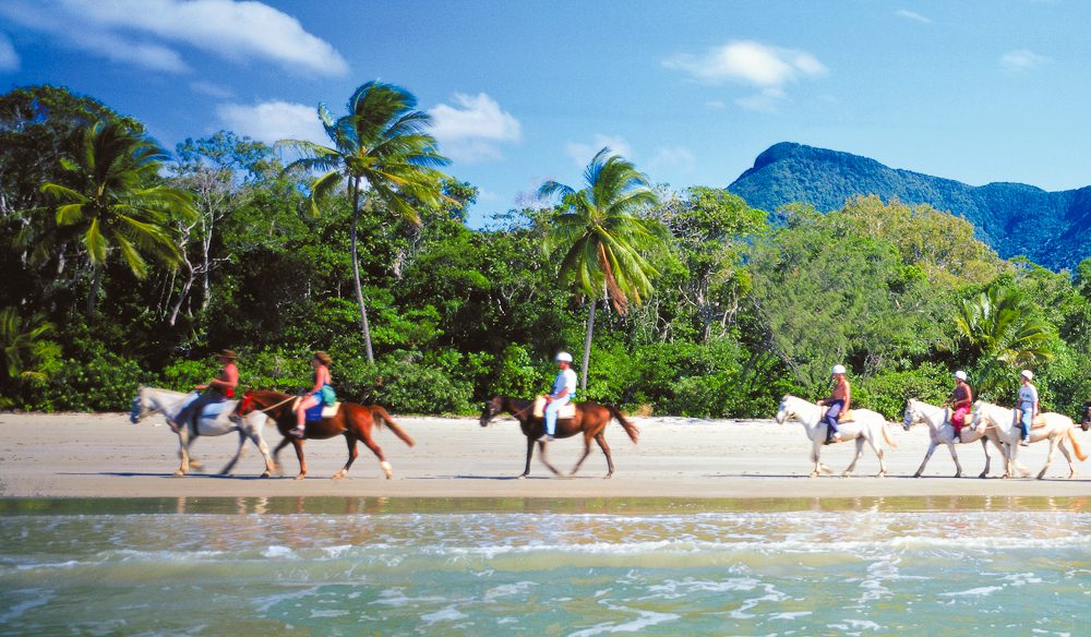 Horse riding, Cape Tribulation beach style.