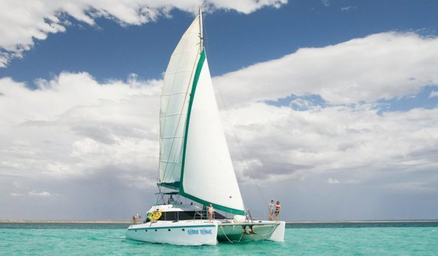 Ningaloo sail yacht Shore Thing 5