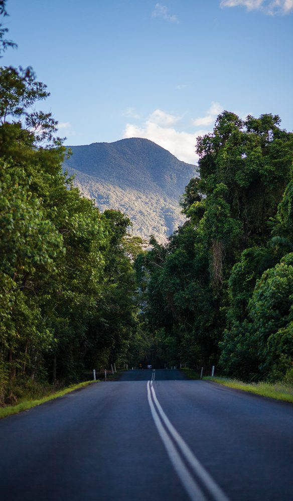 The road to Daintree Eco Lodge