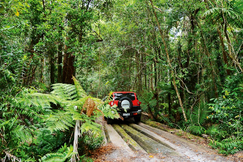 Into the forests of Fraser Island.