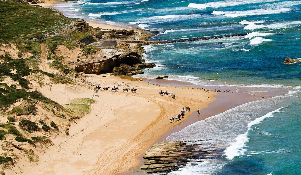 St Andrews beach canter with Gunnamatta Trail Rides.