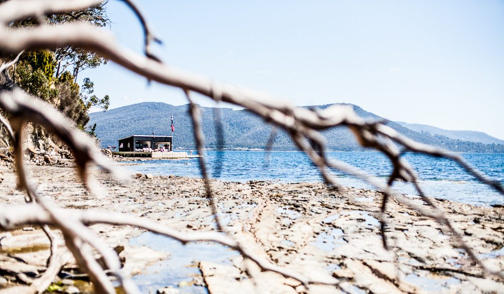 The Boathouse through driftwood, Satellite Island (photo: Mark Chew).