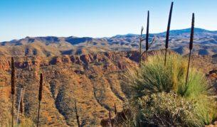 An amazing vista, Acacia Ridge, Flinders Ranges, captured by Steve Batten (Your Shot winner, issue 65).