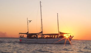 Darwin Harbour Cruise- Tumlaren Sunset