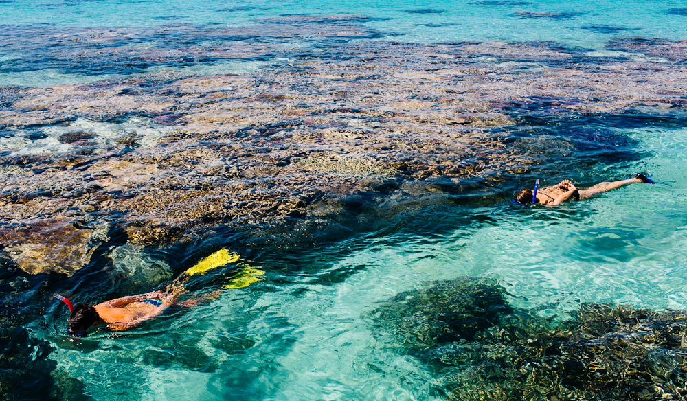 Winner Best Aquatic Experience 2015: Snorkelling/diving the Great Barrier Reef (photo: Elise Hassey).