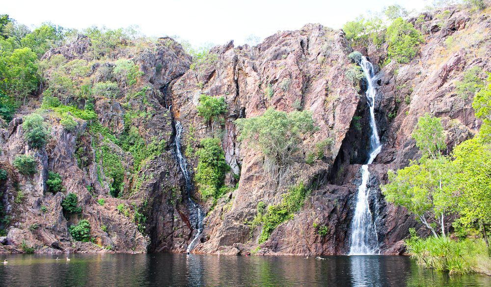 Take a dip at Wangi Falls - only in the dry season!