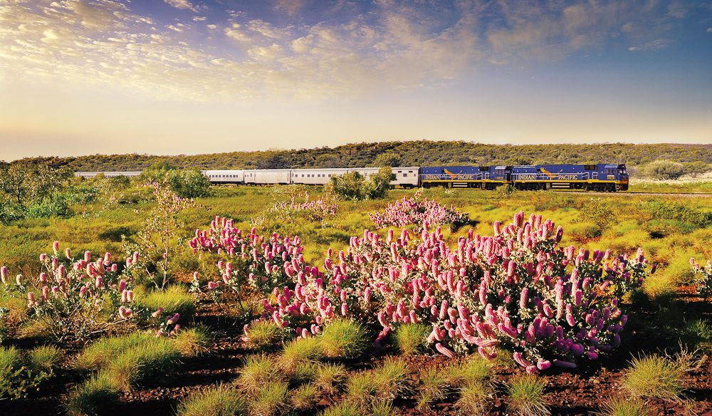 The classic trans-Continental rail journey: Indian Pacific.
