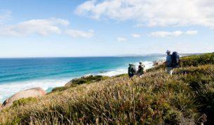 An Adventure Tassie wilderness walk