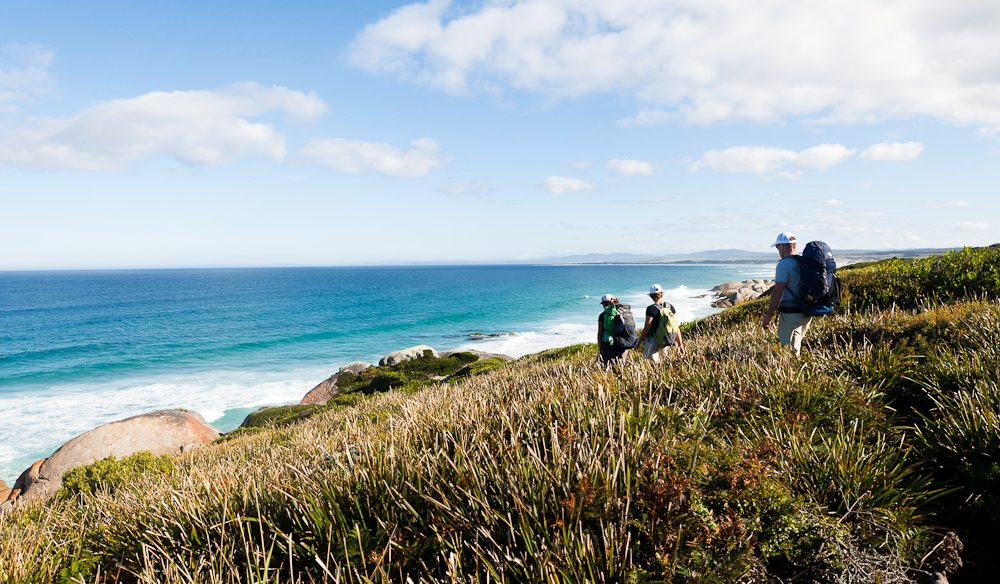 All you have to carry is your daypack on a Life's An Adventure Tassie wilderness walk.