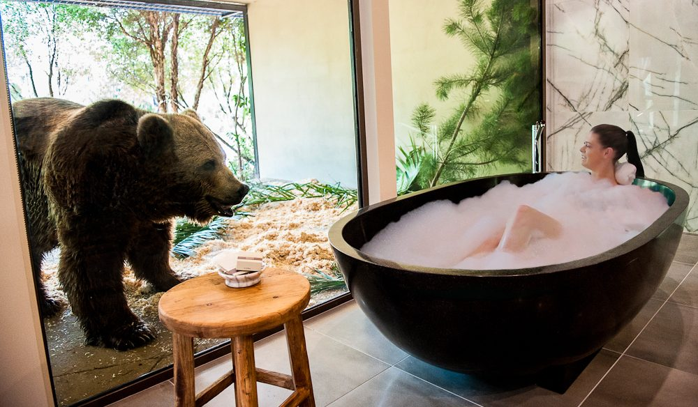 Bathtime wildlife encounter, Jamala Wildlife Lodge, Canberra.