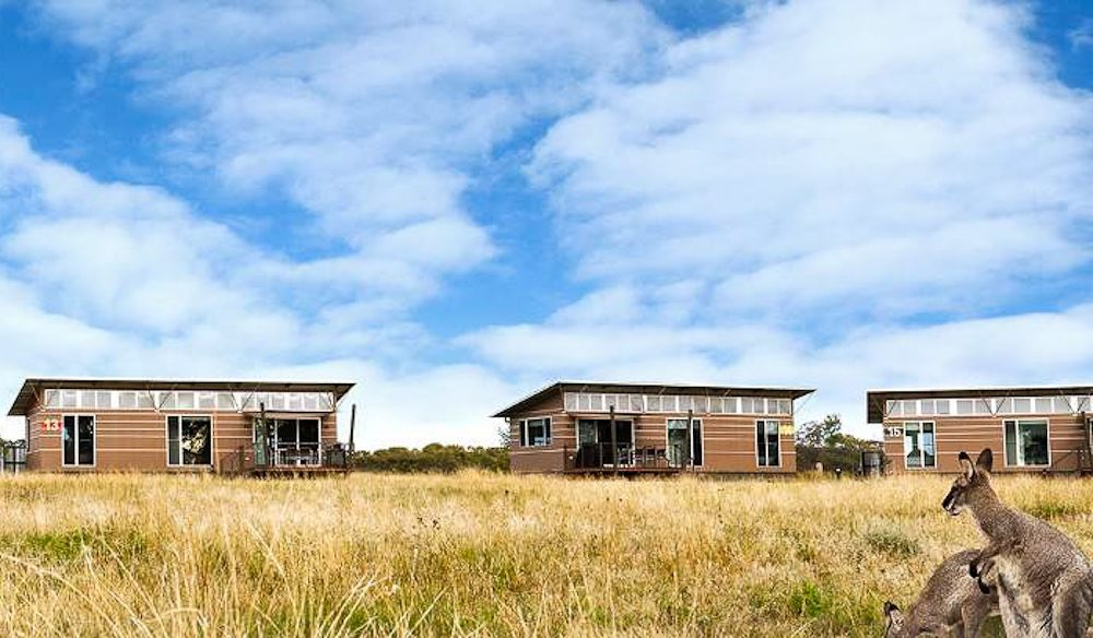 The wide opens spaces around Taronga Western Plains Savannah Cabins.