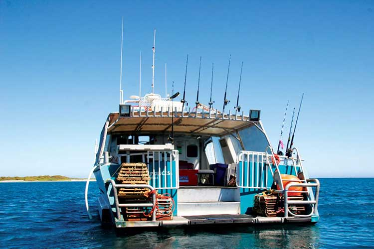 Charter fishing of Abrolhos Islands