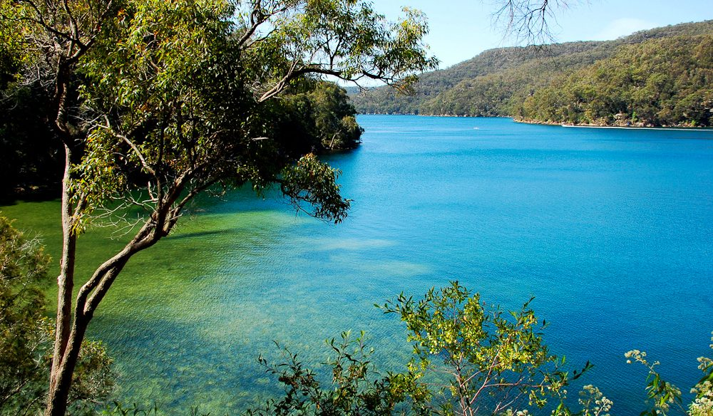 5 Of Sydney S Best Bush Walks Australian Traveller