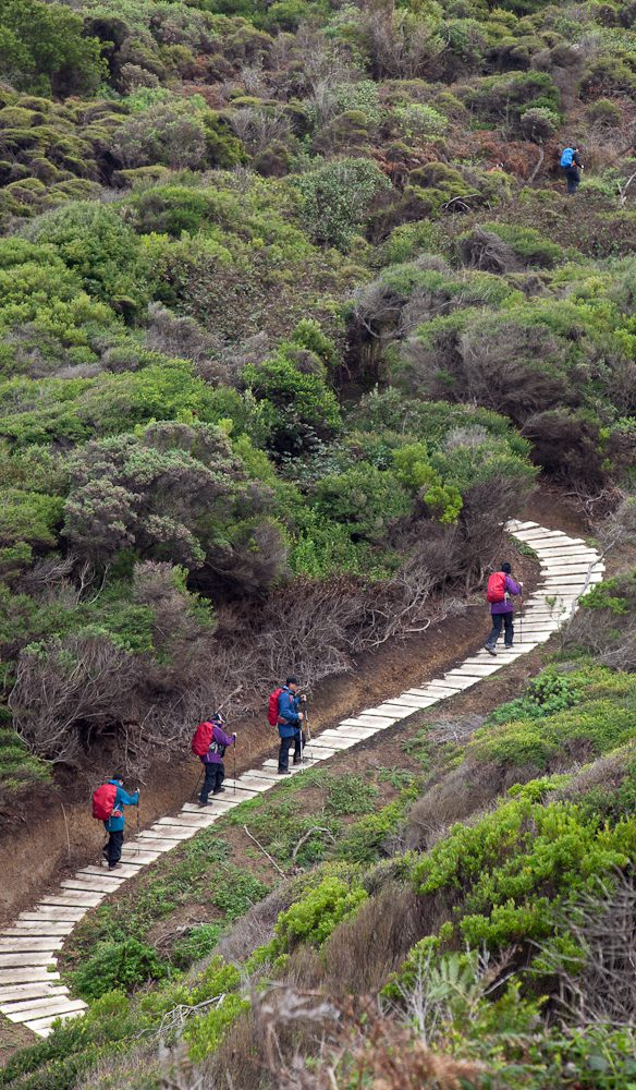 Steps Great Ocean Walk