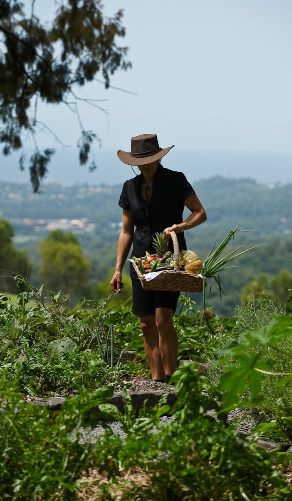 Picking produce for the kitchen (photo: Jaharn Giles).