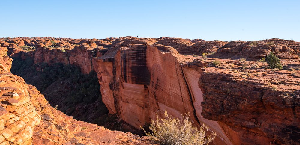 The sculptured red walls of Kings Canyon.