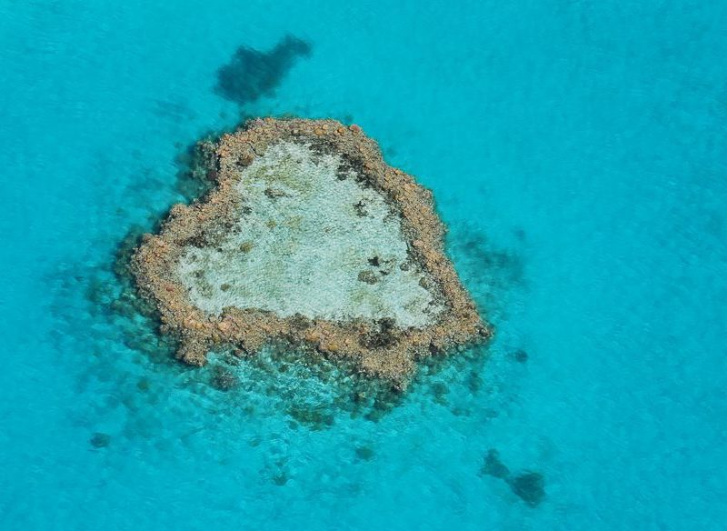 Heart Reef Great Barrier Whitsundays