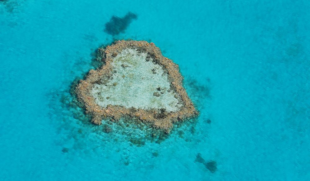 The Great Barrier Reef's famous heart-shaped reef.