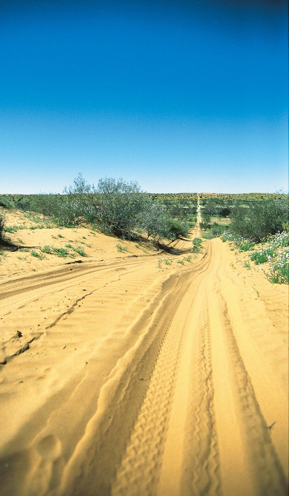Sand ahoy... traversing the Simpson Desert is a once-in-a-lifetime affair.