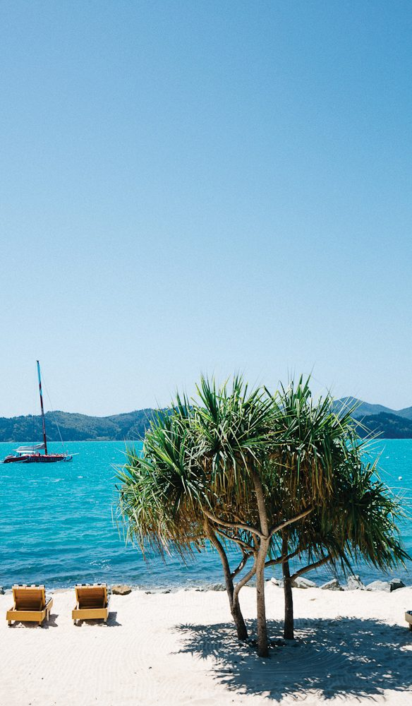 Hamilton Island - not the work place in the world to hold the Race Week regatta (photo: Elise Hassey).