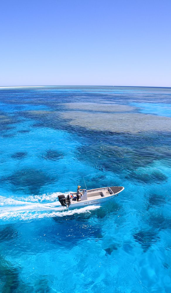 Off-shore snorkelling paradise, Rowley Shoals (off the WA coast)