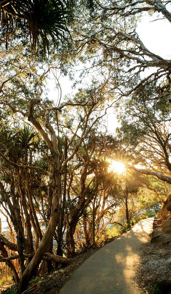 Strolling along Noosa's coastal path (photo: Elizabeth Allnutt).