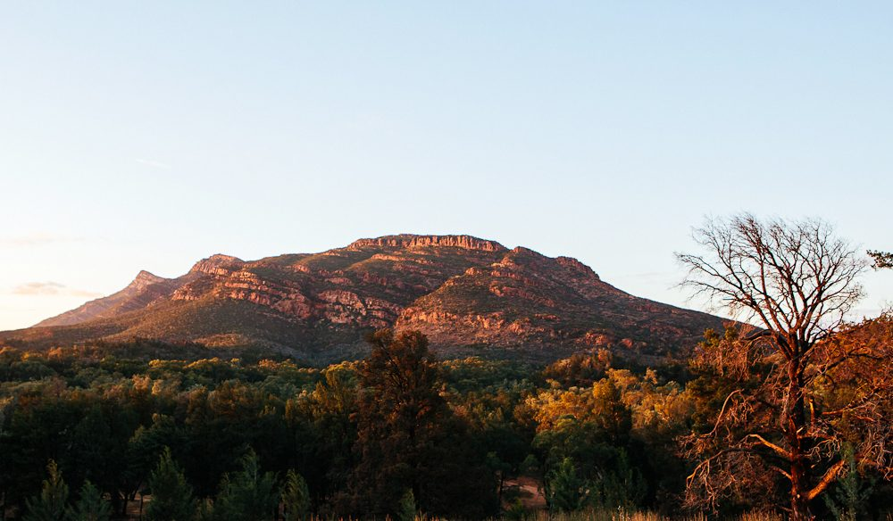 A walk through the Flinder's Ranges' Wilpena Pound is our most unforgettable adventure this year (photo: Elise Hassey).
