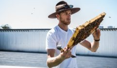 Do it yourself beekeeping at Bee One Third, Brisbane.