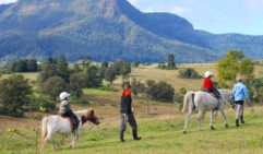 With activities ranging from feeding the animals to egg-collecting, cow-milking, swimming, horse riding and whip-cracking lessons, you won't hear those dreaded words 'I'm bored!' at Cedar Glen Farmstay.