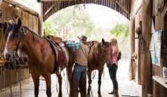 Unsaddling back at the stables after an exhilarating ride.