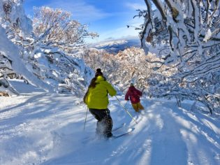 Powder skiing Wombat Valley Mt Buller