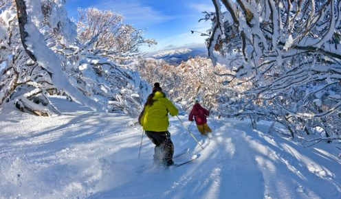 Powder skiing through Wombat Valley, Mt Buller.