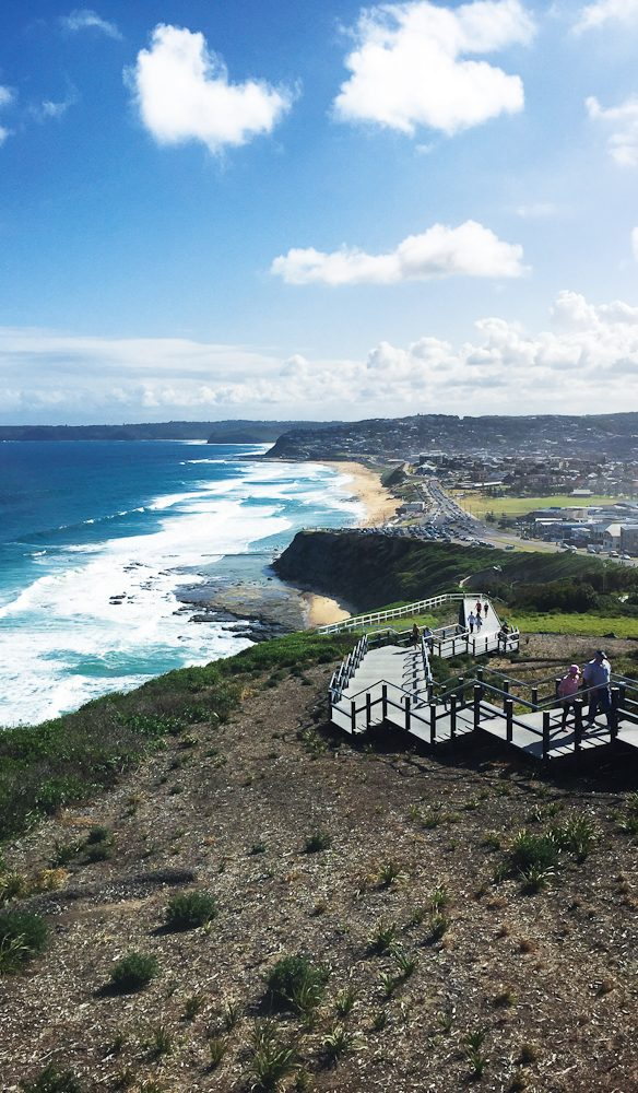 The spectacular coastal Memorial Walk (photo: Megan Arkinstall).