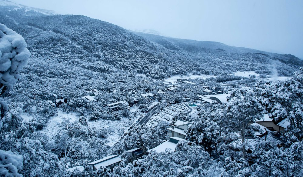 Thredbo winter wonderland