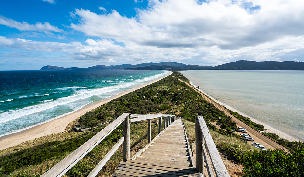 The Neck in Bruny Island