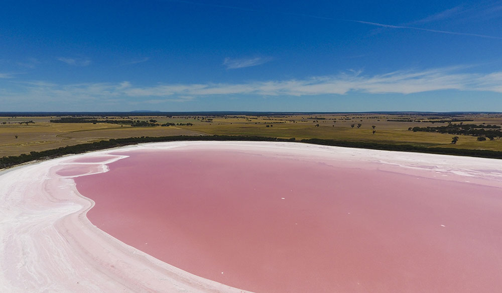 The pink lake phenomenon in South Australia.