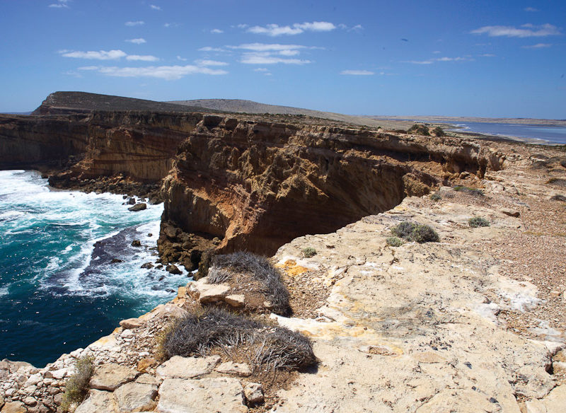 south australia driving holidays eyre peninsula cummings look out