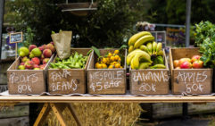 Organic choice: Slow Food Farmers' Markets,  Abbotsford Convent, Melbourne (photo: Roberto Seba).