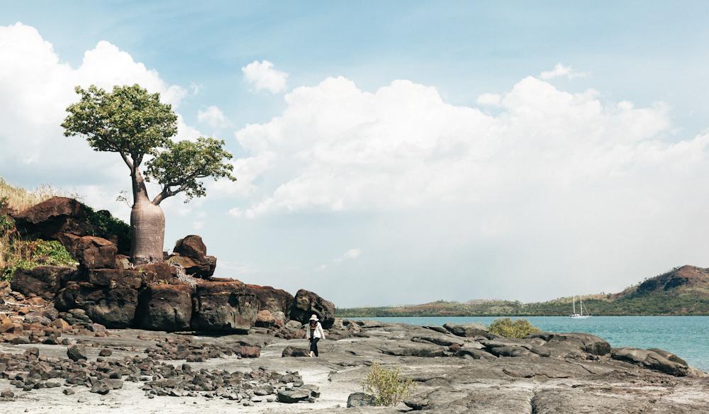 sheep island kimberly cruises australian attractions