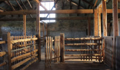 The beautiful old wool shed at Arkaba Station (photo: Lara Picone).